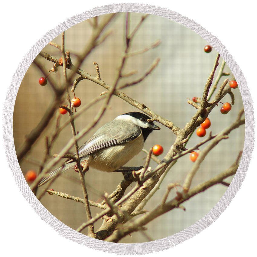 Animal Round Beach Towel featuring the photograph Chickadee 2 Of 2 by Robert Frederick