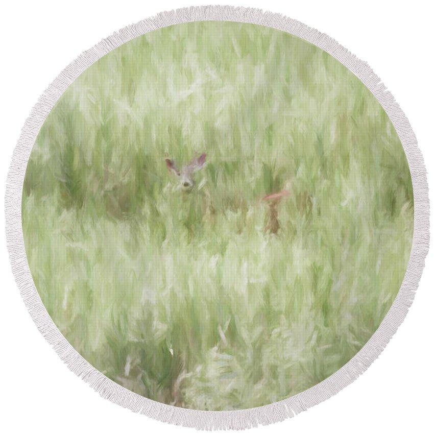 Digital Round Beach Towel featuring the digital art Child Of The Meadows by Dawn J Benko