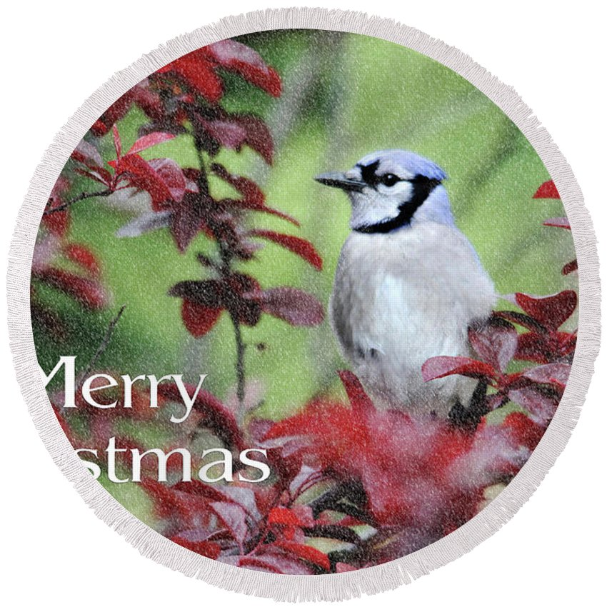 Birds Round Beach Towel featuring the photograph Christmas And Blue Jay by Trina Ansel