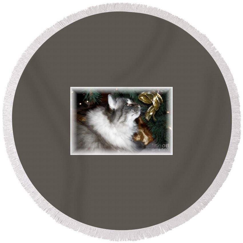 Christmas Round Beach Towel featuring the photograph Christmas Kitty by Debbi Granruth