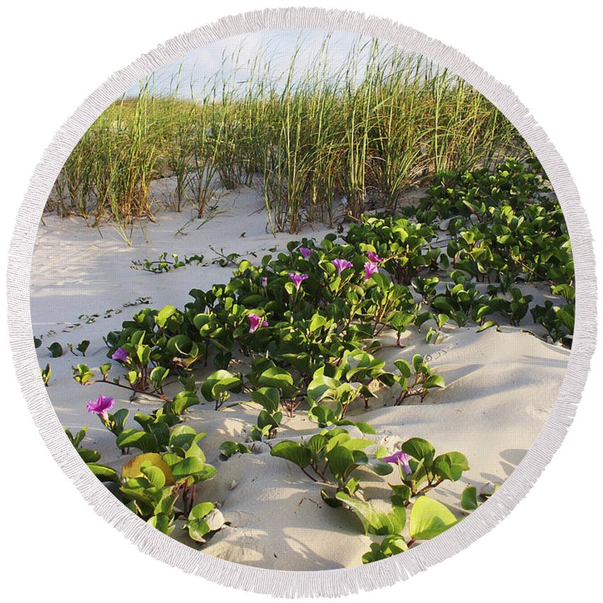 Nature Round Beach Towel featuring the photograph Climbing The Dunes by Marilyn Hunt
