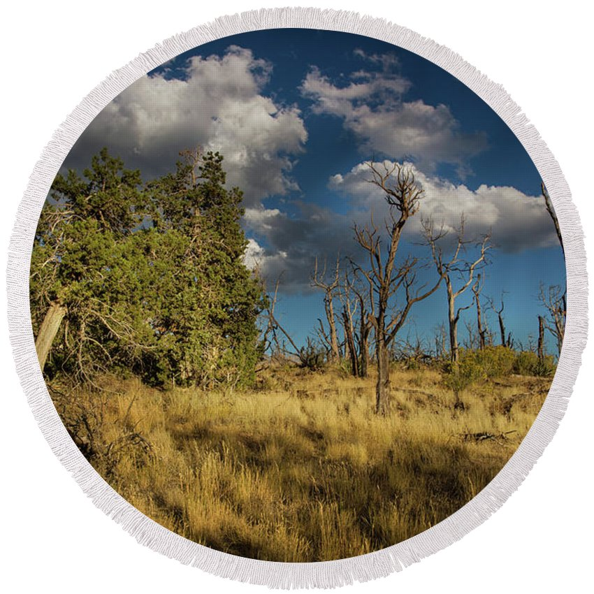 Mesa Verde National Park Round Beach Towel featuring the photograph Clouds Over Mesa Verde by Kunal Mehra