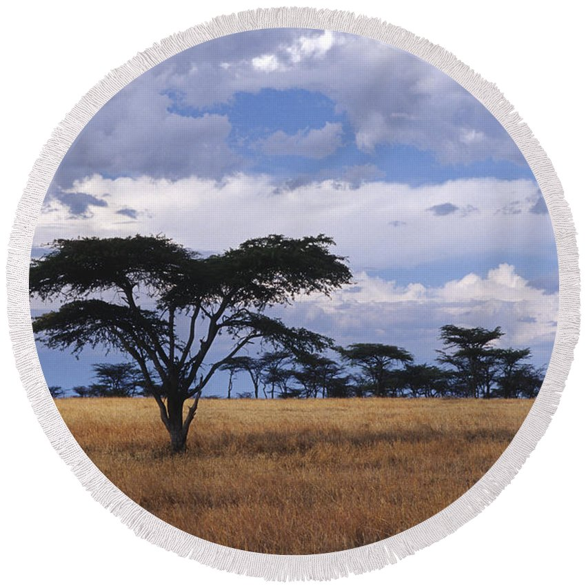 Africa Round Beach Towel featuring the photograph Clouds Over The Masai Mara by Sandra Bronstein