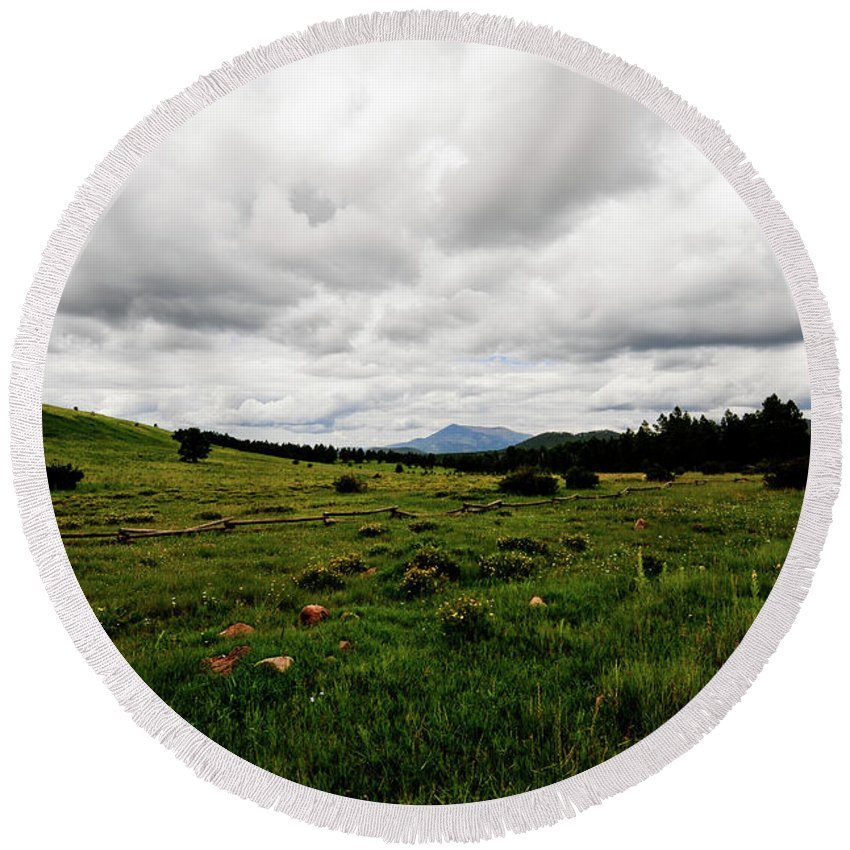 Flowers Round Beach Towel featuring the photograph Cloudy Meadow by Scott Sawyer