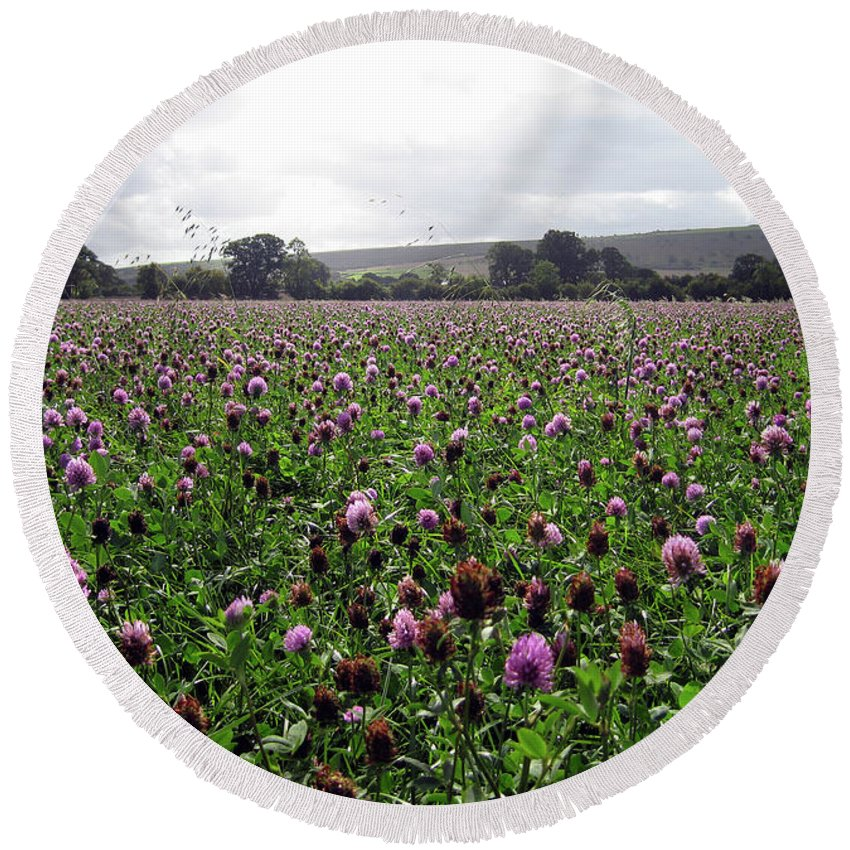 Flowers Round Beach Towel featuring the photograph Clover Field Wiltshire England by Kurt Van Wagner