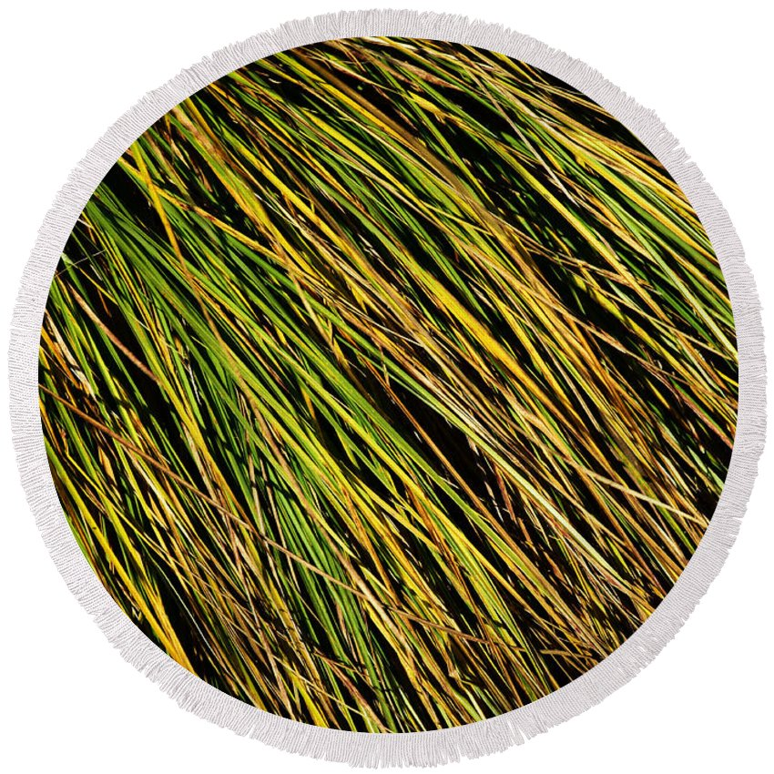Grass Round Beach Towel featuring the photograph Clump Of Grass Texture by Jozef Jankola