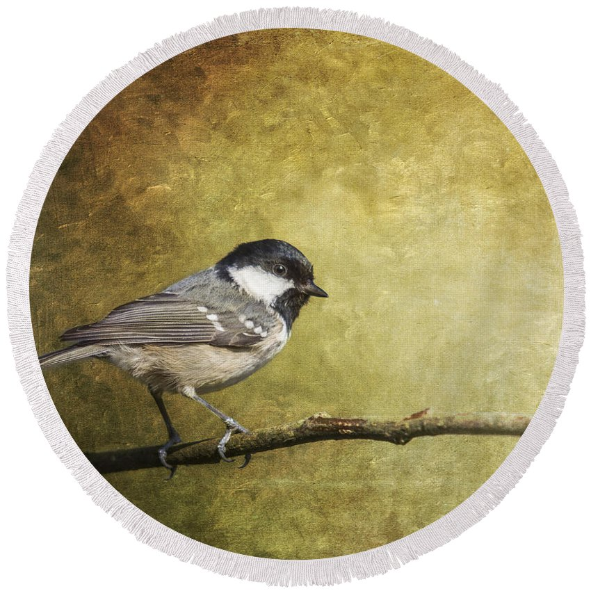 Coal Tit Round Beach Towel featuring the photograph Coal Tit Periparus Ater by Liz Leyden