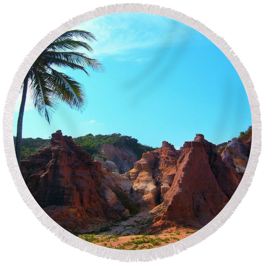 Coconut Round Beach Towel featuring the photograph Coconut by FL collection