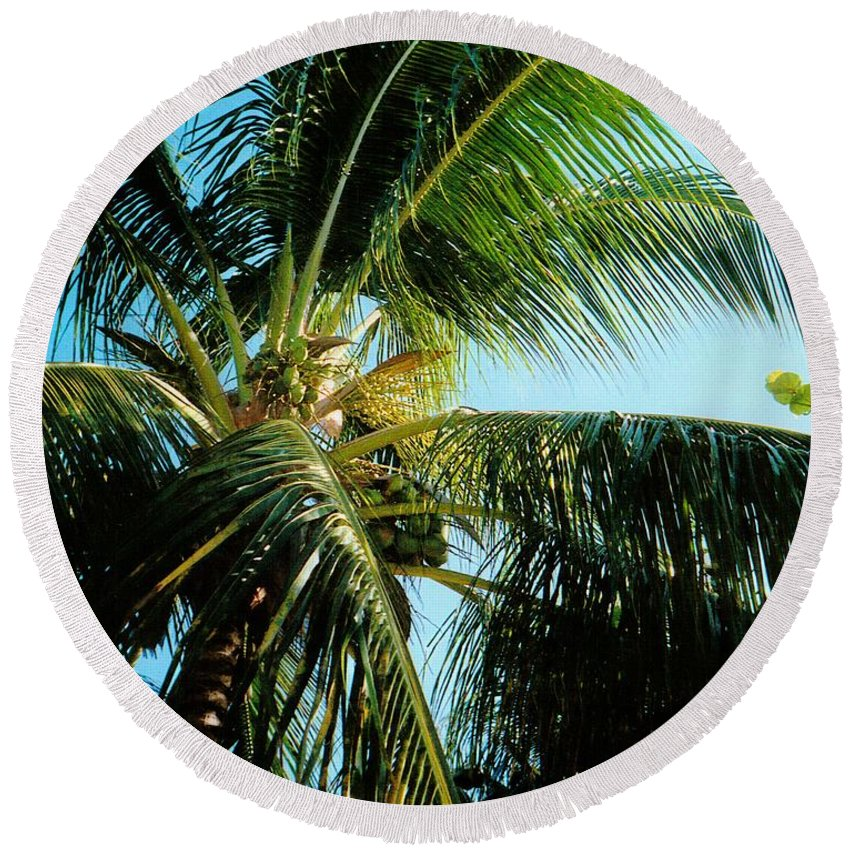 Jamaica Round Beach Towel featuring the photograph Coconut Tree by Debbie Levene