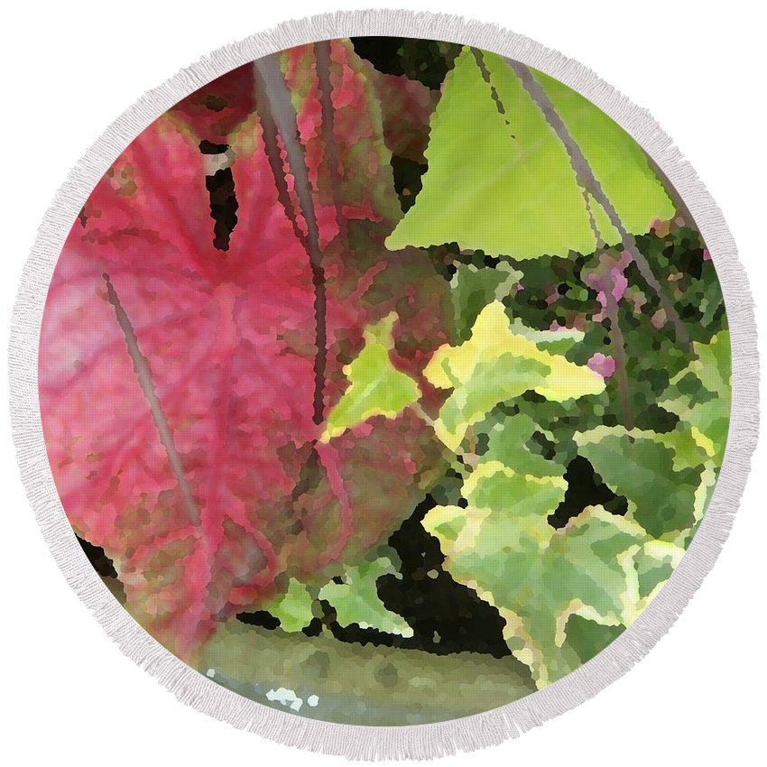 Coleus Round Beach Towel featuring the photograph Coleus And Ivy by Jean Macaluso