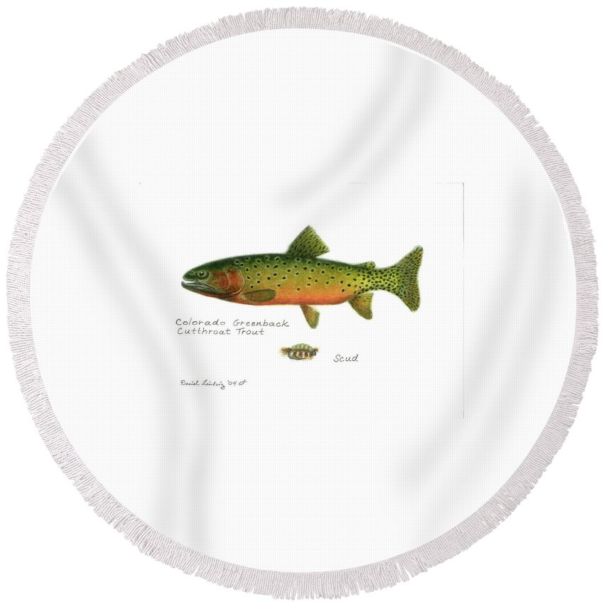 Fish Round Beach Towel featuring the drawing Colorado Greenback Cutthroat Trout by Daniel Lindvig