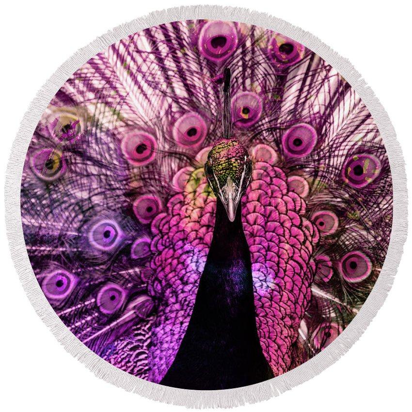 Peacock Round Beach Towel featuring the digital art Colorful Peacock by Gabi Hampe
