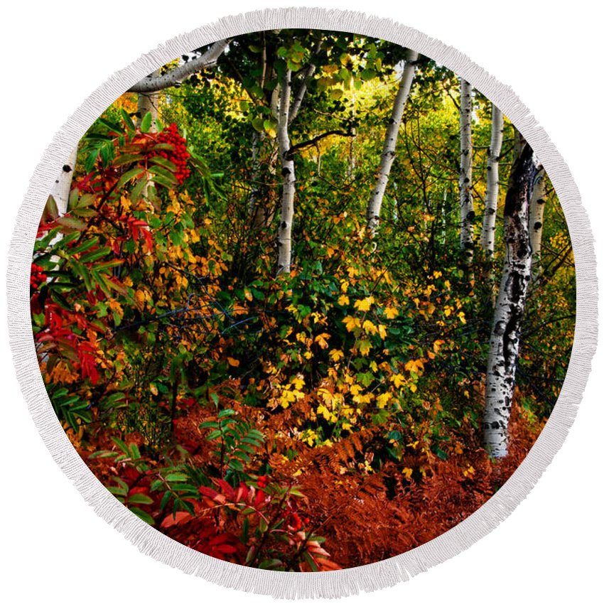 Colorado Round Beach Towel featuring the photograph Colors On Mcclure Pass by Ken Smith
