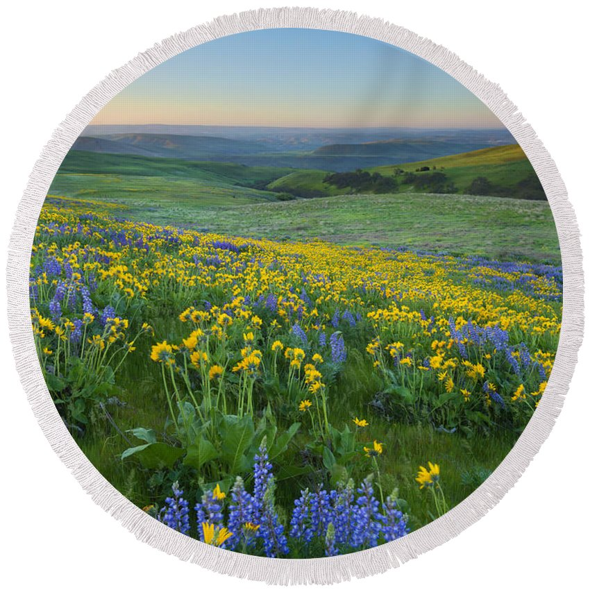 Columbia Hills Round Beach Towel featuring the photograph Columbia Hills Wildflower Dawn by Mike Dawson