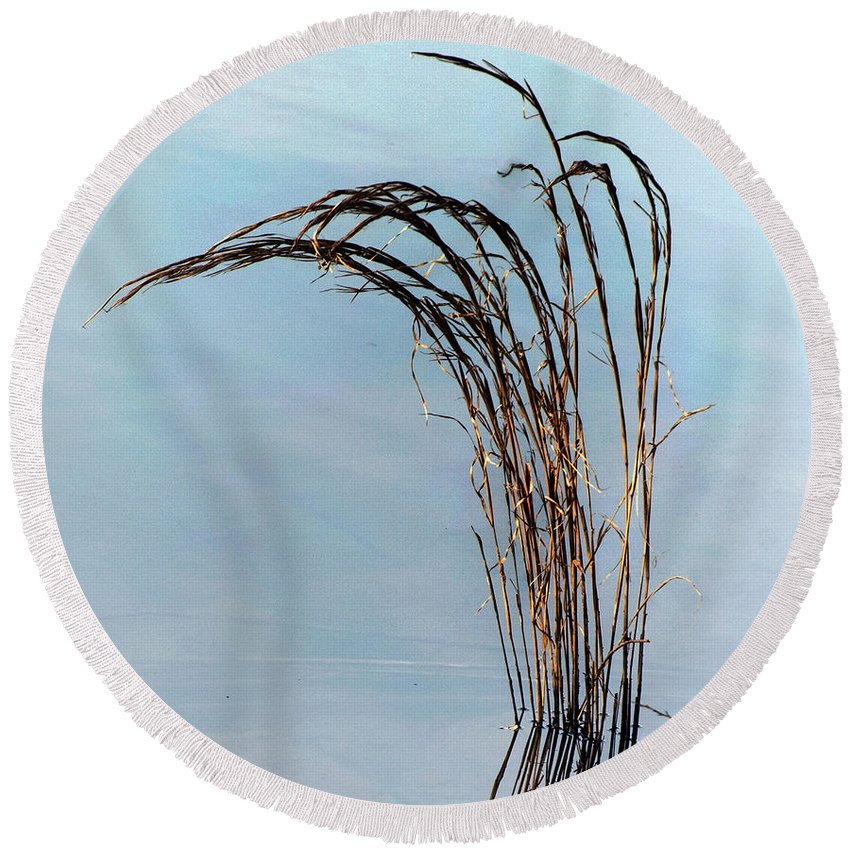 California Scenes Round Beach Towel featuring the photograph Combie Lake Reeds by Norman Andrus