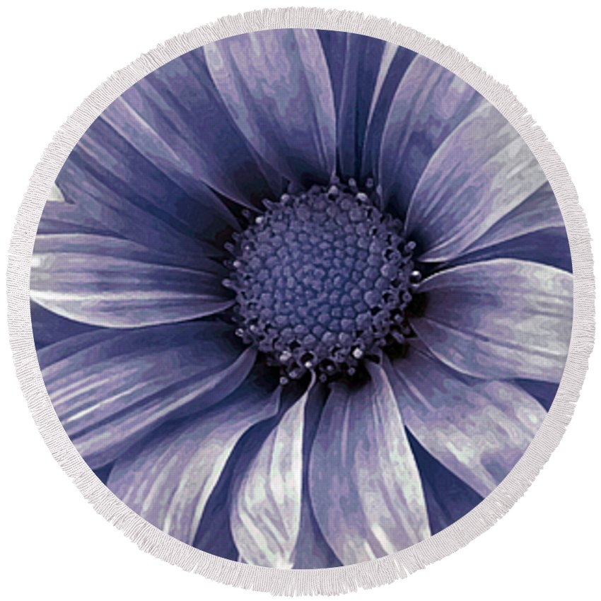 Flower Round Beach Towel featuring the photograph Coming Up Daisies by Angelina Tamez