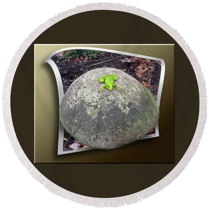 2d Round Beach Towel featuring the photograph Concrete Toad Stool by Brian Wallace