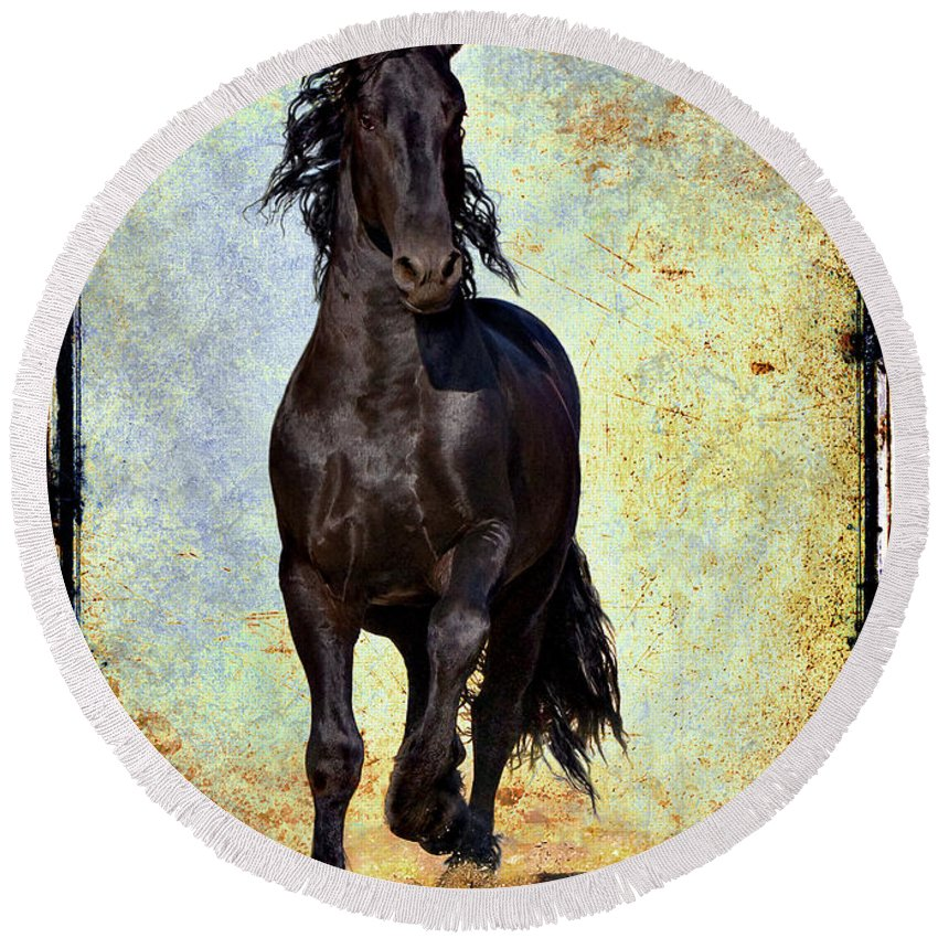 Round Beach Towel featuring the photograph Conqueror by Jean Hildebrant