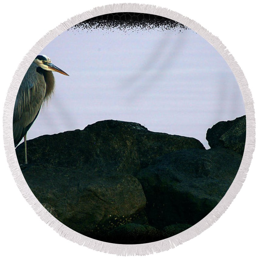 Clay Round Beach Towel featuring the photograph Contemplating Heron by Clayton Bruster