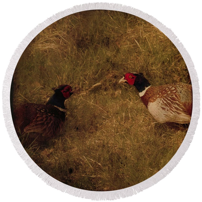 Pheasant Round Beach Towel featuring the photograph Conversations by Angel Tarantella