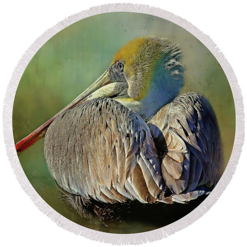 Brown Pelican Round Beach Towel featuring the photograph Cool Dude by HH Photography of Florida