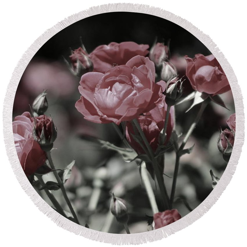 Copper Pink Rose Round Beach Towel featuring the photograph Copper Rouge Rose in Almost Black and White by Colleen Cornelius