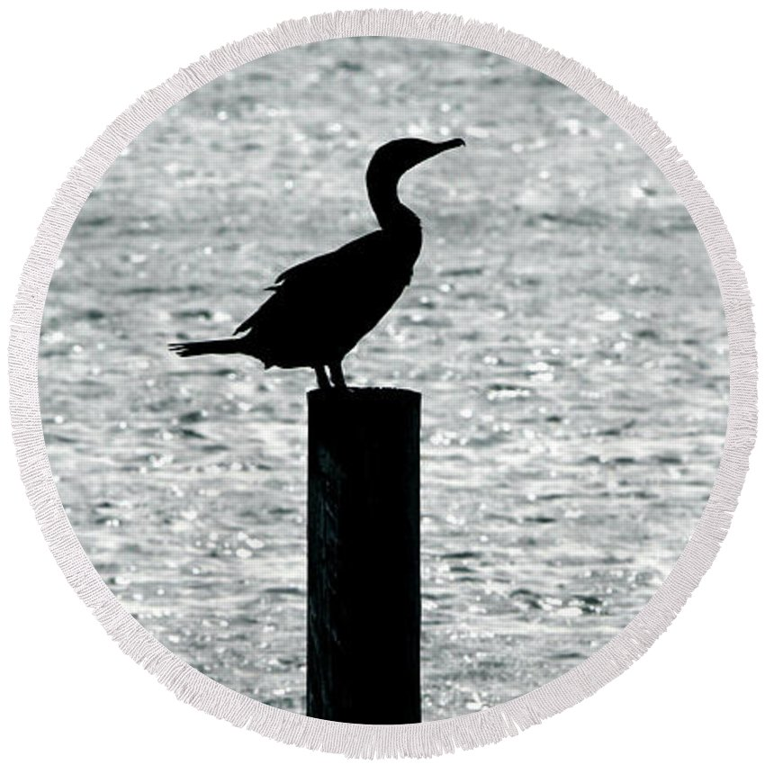 Cormorant Round Beach Towel featuring the photograph Cormorants Port Jefferson New York by Bob Savage