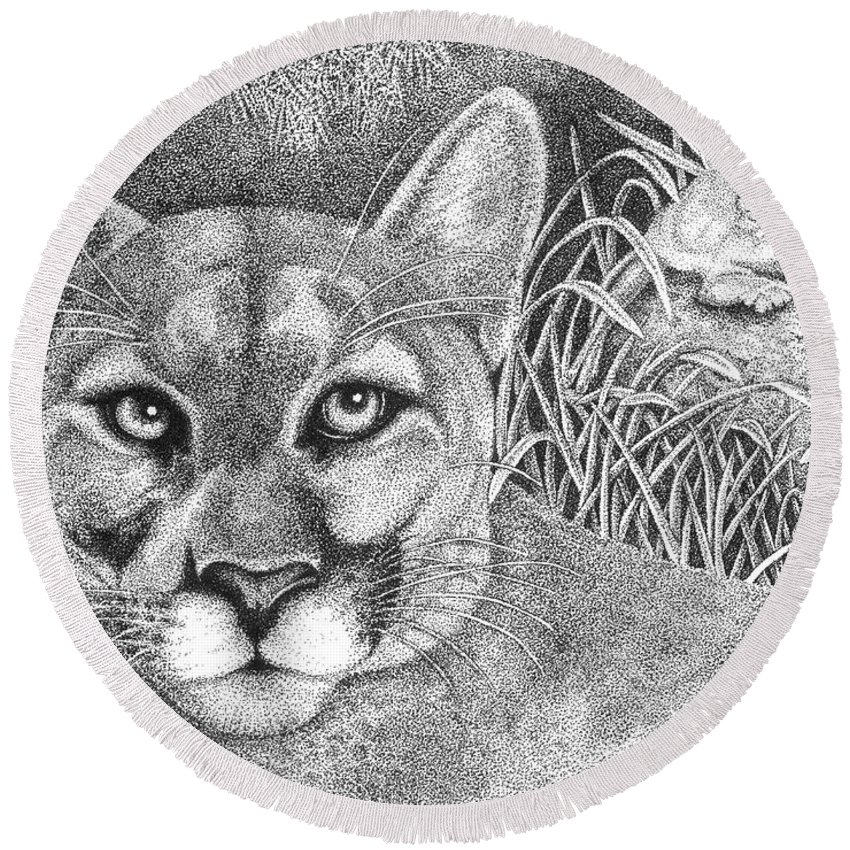 Wildlife Round Beach Towel featuring the drawing Cougar by Lawrence Tripoli
