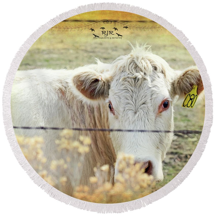 White Round Beach Towel featuring the photograph Cow by Rebecca Reyes