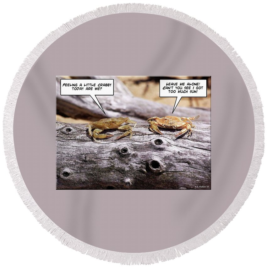 2d Round Beach Towel featuring the photograph Crabby by Brian Wallace