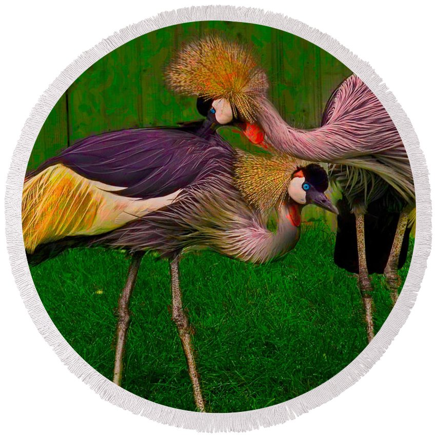 Crest Round Beach Towel featuring the photograph Crested Cranes by Chris Lord