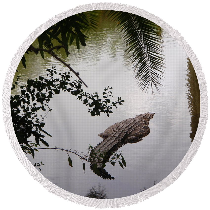Croco Round Beach Towel featuring the photograph Croco by Are Lund