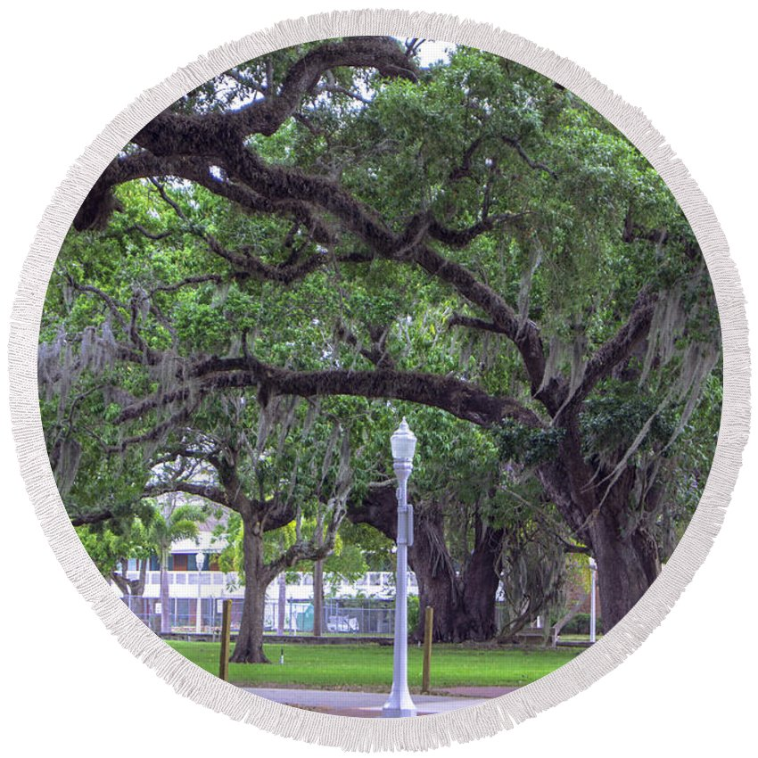 Crossing Trees Round Beach Towel featuring the photograph Crossing Trees by Michael Frizzell