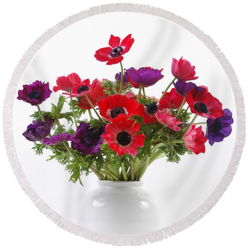 Flower Round Beach Towel featuring the photograph crown Anemone in a white vase by Ilan Amihai