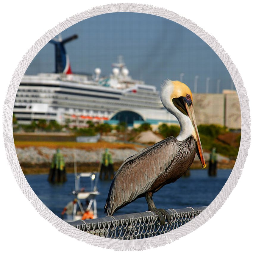 Pelican Round Beach Towel featuring the photograph Cruising Pelican by Susanne Van Hulst