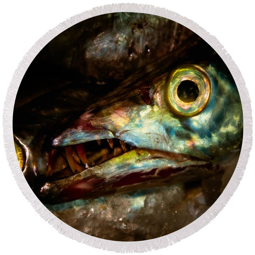 Animal Round Beach Towel featuring the photograph Cutlassfish Eyes by Venetta Archer