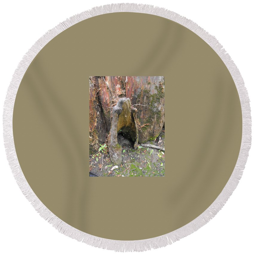 Chache River State Natural Area Round Beach Towel featuring the photograph Cypress Knee by Ginger Repke