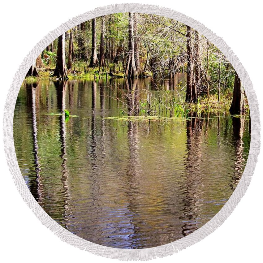 Cypress Trees Round Beach Towel featuring the photograph Cypress Trees Along The Hillsborough River by Carol Groenen