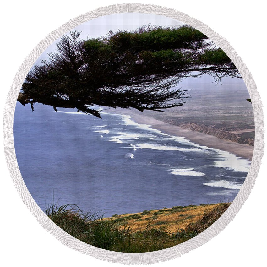 Point Reyes Lighthouse Round Beach Towel featuring the photograph Cypress View by Michael Gordon