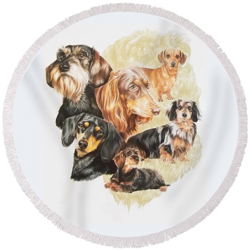 Purebred Dog Round Beach Towel featuring the drawing Dachshund Revamp by Barbara Keith