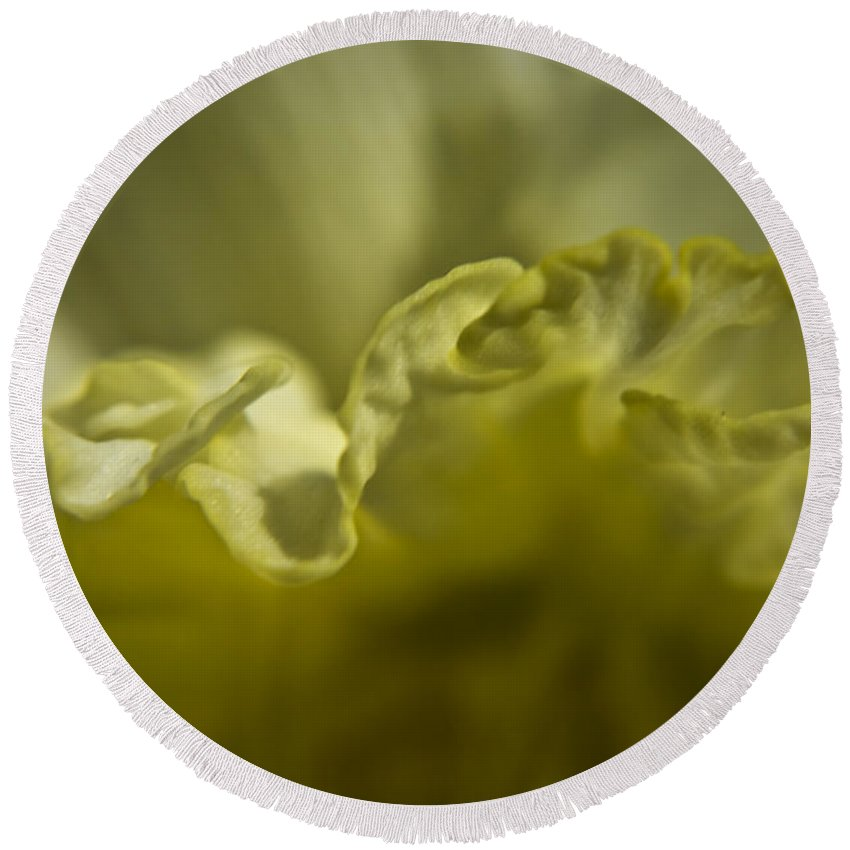 Flower Round Beach Towel featuring the photograph Daffodil Ruffles by Teresa Mucha