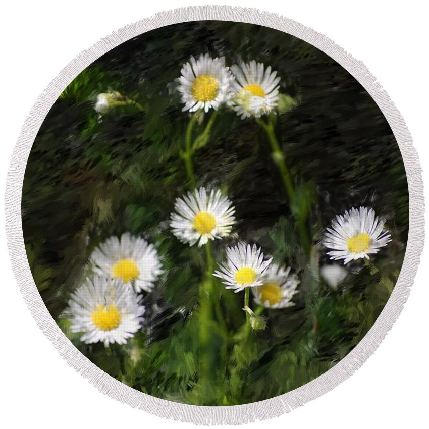 Digital Photograph Round Beach Towel featuring the photograph Daisy Day Fantasy by David Lane