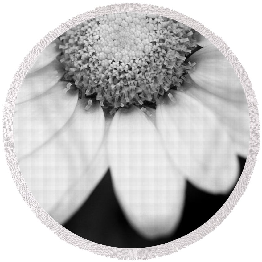 Flower Round Beach Towel featuring the photograph Daisy Smile - Black And White by Angela Rath