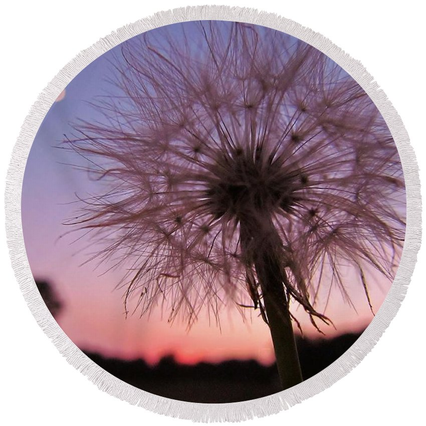 Flower Round Beach Towel featuring the photograph Dandelion Sunset by Ginger Adams