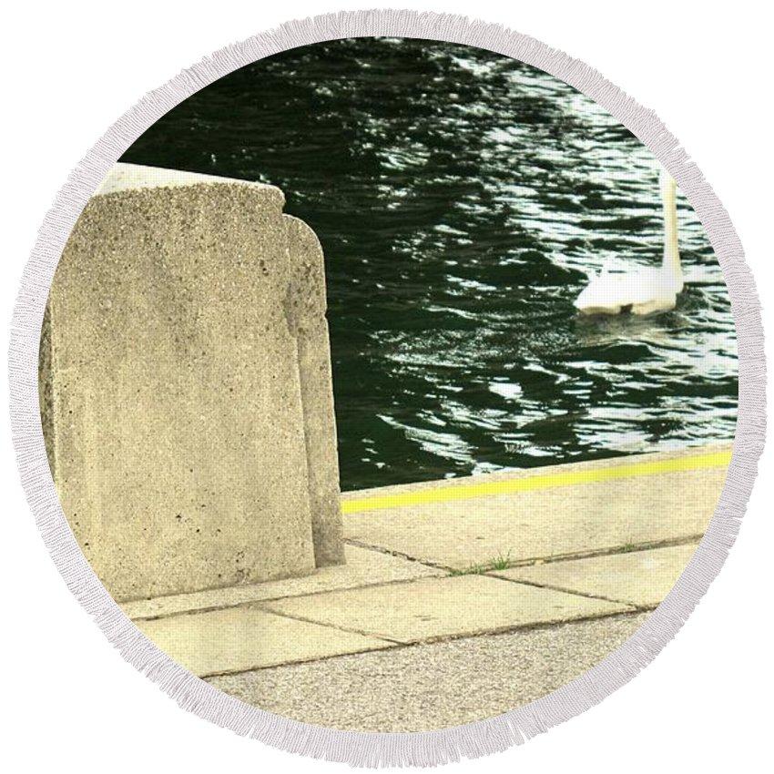 Swan Round Beach Towel featuring the photograph Danube River Swan by Ian MacDonald