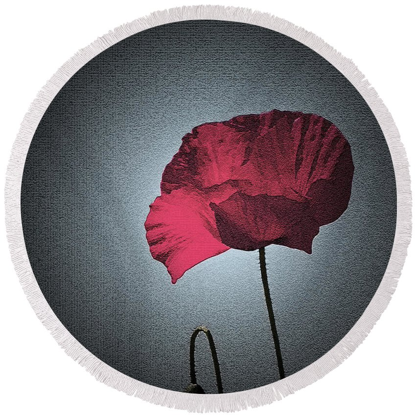 Poppy Round Beach Towel featuring the photograph Dark Remembrance by Bel Menpes