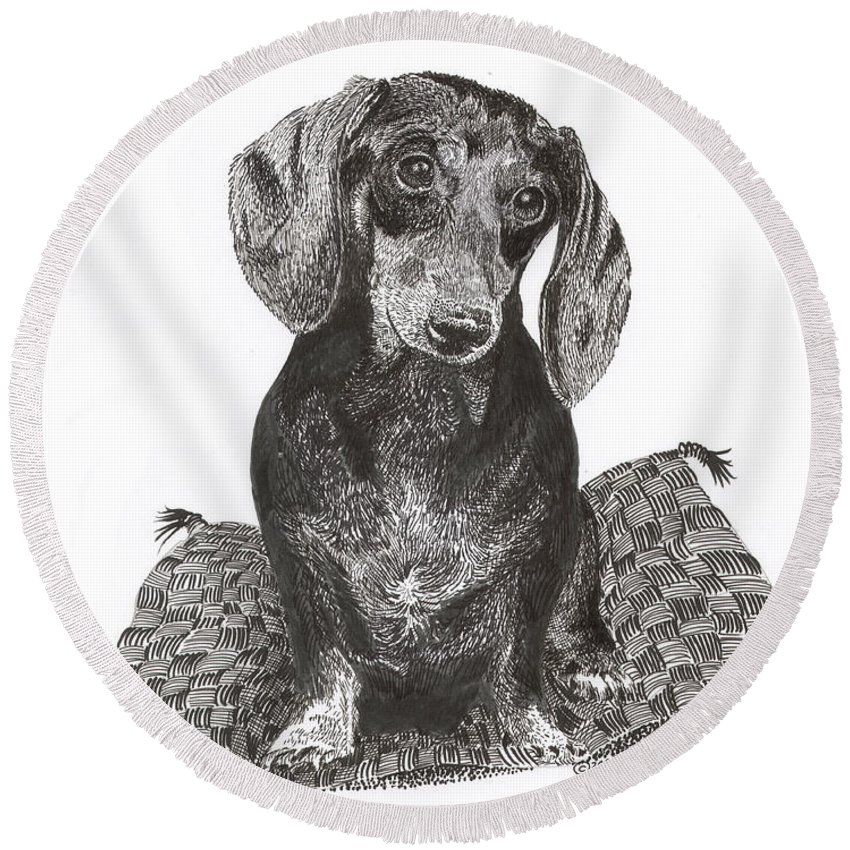 Framed Prints Of Man�s Best Friend. Framed Pen & Ink Art Of Winer Dogs. Ink Art Of Pets. Art Of Dogs And Cats.ink Portraits Of Dogs Round Beach Towel featuring the drawing Dashound Pride by Jack Pumphrey