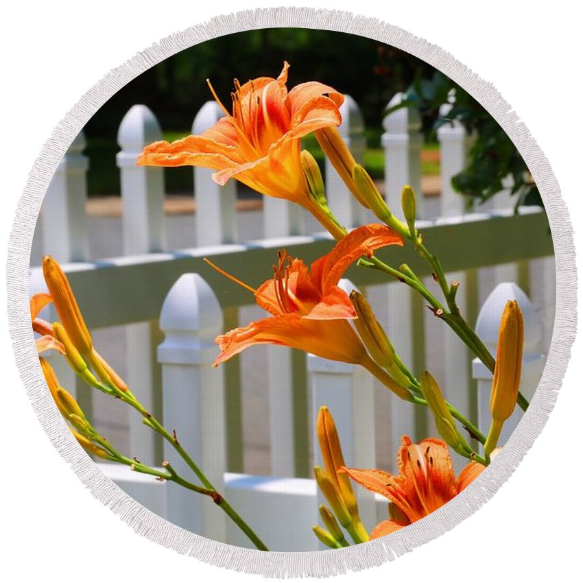 Daylilies Round Beach Towel featuring the photograph Daylilies On Picket Fence by Kathryn Meyer
