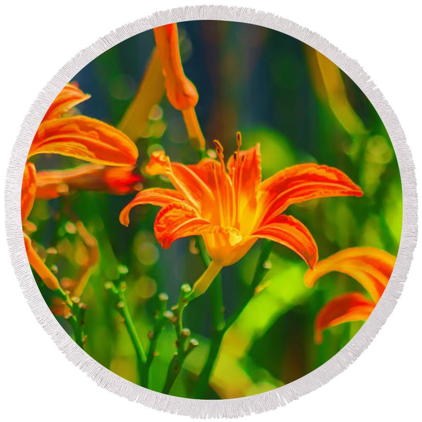 Annual Round Beach Towel featuring the photograph Daylily Trio by Joe Geraci