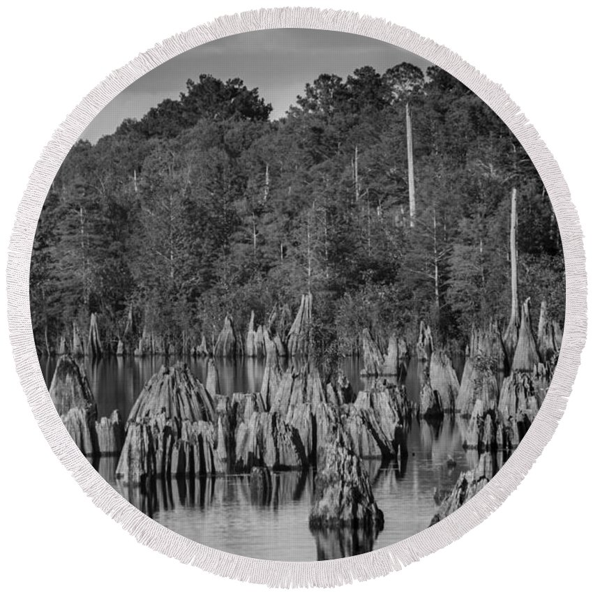 Landscape Round Beach Towel featuring the photograph Dead Lakes Cypress Stumps Bw by Debra Forand